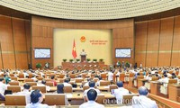 Pada tahun 2020, MN Vietnam mengawasi tema pelaksanaan kebijakan dan undang-undang tentang pencegahan dan pemberantasan pelecehan anak-anak