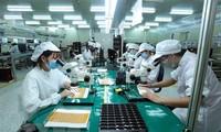 """Koran """"The Japan Times"""" menilai tinggi lingkungan ekonomi-investasi Vietnam"""