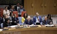 Negara-negara sekutu mencela pandangan AS tentang perdamaian Timur Tengah