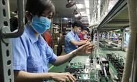 Pakar Rusia menilai bahwa Vietnam punya banyak potensi untuk menyerap investasi