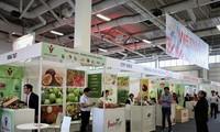 "Badan-badan usaha anggota Asosiasi Hortikultura Vietnam berpartisipasi pada Pekan Raya ""Fruit Logistica 2020"""