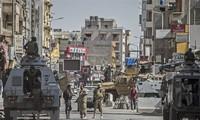 Tentara Mesir membasmi 10 anasir teroris di Sinai Utara
