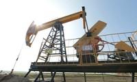 Harga minyak merosot setelah konferensi OPEC+ tertunda