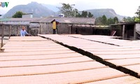 Desa kerajinan produksi sohun Binh Lu, Provinsi Lai Chau – Hasil-guna dari desa kerajinan di daerah Tay Bac