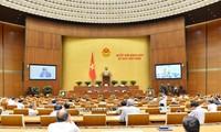 MN Vietnam membahas Resolusi tentang percobaan pola pemerintahan kota di Kota Da Nang