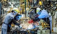 Perusahaan Konsultasi McKinsey memberikan penilaian tentang kemampuan Vietnam dalam memulihkan ekonomi