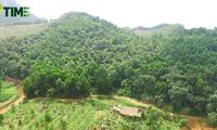 Lahan Usaha Tani Hon Mu Bagi yang Ingin Hidup Dekat dengan Alam