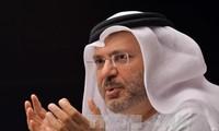 UAE: Arab states don't seek 'regime change' in Qatar