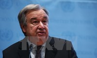 COP 23: UN chief urges further efforts on climate change