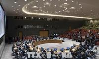 US vetoes UN resolution denouncing violence against Palestinians
