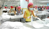 Ho Chi Minh City lures 480 million USD in FDI in 2 months