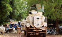 Vietnam supports integrated approach to address challenges in Mali
