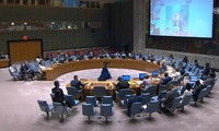 Vietnam asks parties in Colombia to protect civilians, especially women and children