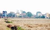 План «реорганизация земельных участков и строительство новой деревни» в Ханое