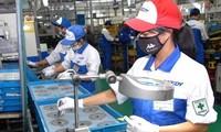 Японским предприятиям будут предоставлены льготы при инвестировании во Вьетнам