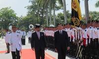 Президент Чыонг Тан Шанг провел переговоры с султаном Королевства Бруней