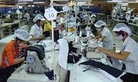 Реорганизация текстильно-швейной отрасли в целях обеспечения потребностей экономической интеграции