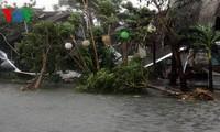 Два человека погибли, 11 получили ранения из-за тайфуна «Нари»