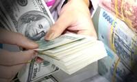 2013 год был удачным для Вьетнама в проведении валютной политики