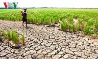 Рекордно низкий уровень воды в реке Меконг угрожает странам низовья