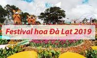 Фестиваль цветов Далата