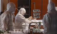 В Италии тестирование вакцины на животных показало положительный результат