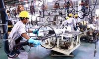 Вьетнамские работники приспосабливаются к условиям международной интеграции
