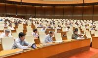 Депутаты парламента обсудили Резолюцию об экспериментальной реализации модели городского управления в городе Дананге