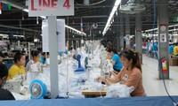 Выдвижение идей по административному реформированию с целью оказания предприятиям поддержки в восстановлении производства