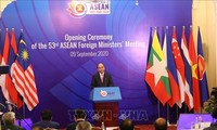 Вьетнам проявил креативность и гибкость в осуществлении функций Председателя АСЕАН 2020