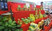 Чай «Камелия» - главный источник дохода жителей уезда Баче