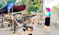 О Ва Тхи Киа, которая приложила большие усилия для преодоления бедности и развития семейного хозяйства