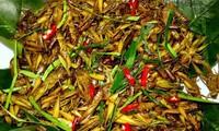 Ăn côn trùng ở Hà Nội - bạn có dám thử không?