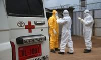 Dập tắt đại dịch Ebola cần chặng đường dài