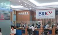 BIDV tổ chức kỷ niệm 20 năm chuyển đổi mô hình thương mại và 6 năm thành lập BIDC