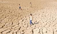 Nhật Bản hỗ trợ 2,5 triệu USD cho người dân Việt Nam ở vùng hạn hán
