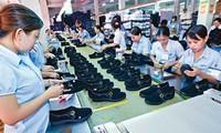 Thặng dư thương mại Việt Nam – Canada ngày càng nới rộng