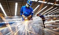 Năm 2017: Số lượng doanh nghiệp Việt Nam tăng mạnh