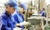Nhiều doanh nghiệp đánh giá xu hướng sản xuất kinh doanh quý I/2019 sẽ tốt lên