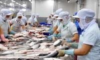 Hoa Kỳ công nhận tương đương hệ thống kiểm soát an toàn thực phẩm cá da trơn của Việt Nam