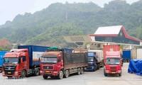 Đảm bảo hoạt động xuất khẩu nông sản tại các cửa khẩu biên giới Việt-Trung