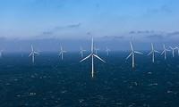 Đan Mạch và Việt Nam thảo luận lộ trình phát triển điện gió ngoài khơi ở Việt Nam