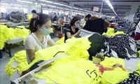 Việt Nam có nhiều cơ hội phát triển trong lĩnh vực dệt may