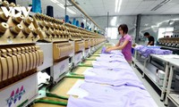 Thúc đẩy chuỗi sản xuất khép kín: Dệt may Việt Nam tận dụng cơ hội từ Hiệp định EVFTA