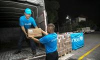 Unicef chuyển khẩn cấp 10 tấn sản phẩm dinh dưỡng điều trị cho trẻ em suy dinh dưỡng ở Việt Nam