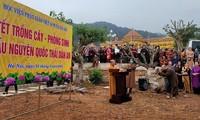 Học viện Phật giáo Việt Nam tại Hà Nội hưởng ứng sáng kiến trồng mới 1 tỷ cây xanh