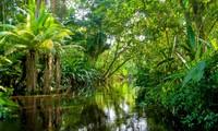 Việt Nam tham dự Hội nghị thượng đỉnh đối tác về tăng trưởng xanh và mục tiêu toàn cầu 2030
