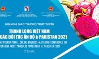 Mở rộng tiêu thụ thanh long Việt Nam tại Ấn Độ và Pakistan