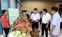Tỉnh Hải Dương tổ chức hội nghị kết nối tiêu thụ hàng hoá nông sản