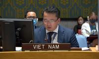 Việt Nam kêu gọi thúc đẩy tiến trình chuyển tiếp tại Sundan